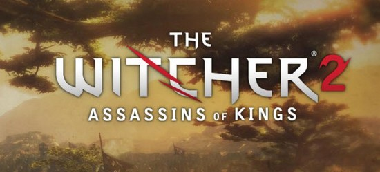 The Witcher 2: Assassins of Kings screen